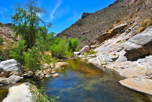 Sabino Canyon Rock Pool
