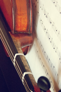 violin neck & side joints