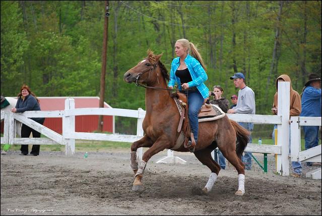 Pony Start-up from Flickr via Wylio