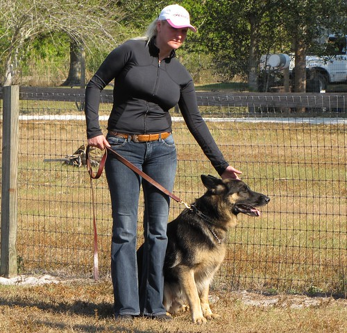 The Basics When It Comes To Training Your Dog 2