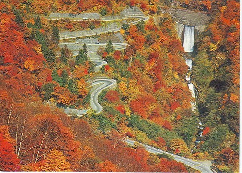 JP winding road near Nikko