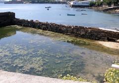 san felipe(Ferrol) 08/09