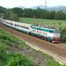 25_08_2009-rigoroso_e656-066