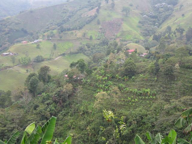 Imagen de las Montañas en Córdoba, Quindio
