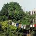 Brooklyn Laundry August by Sir Ladd Halsey