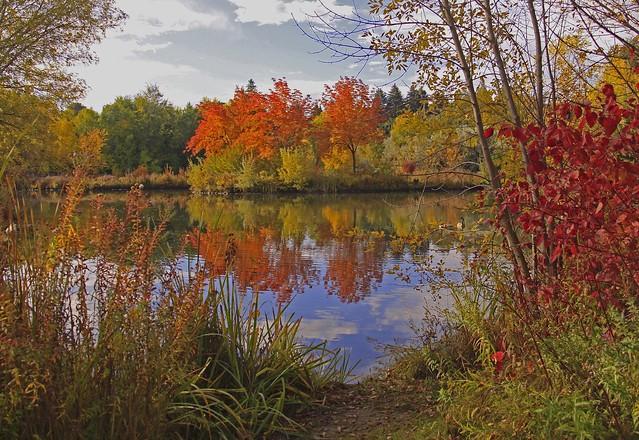 ~Autumn Opening~