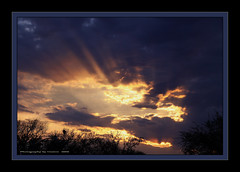 ~~~Rays of Heavenly Light~~~