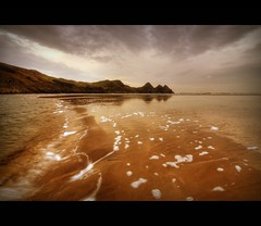 THE GOWER - SWANSEA