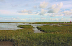 estuary(0.0), prairie(0.0), steppe(0.0), sea(0.0), plateau(0.0), shore(0.0), wetland(1.0), horizon(1.0), polder(1.0), cloud(1.0), field(1.0), grass(1.0), plain(1.0), loch(1.0), natural environment(1.0), mudflat(1.0), meadow(1.0), landscape(1.0), salt marsh(1.0), coast(1.0), rural area(1.0), grassland(1.0), bog(1.0),