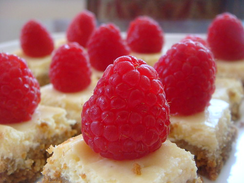 Mini Lemon Cheesecake Squares with Raspberries