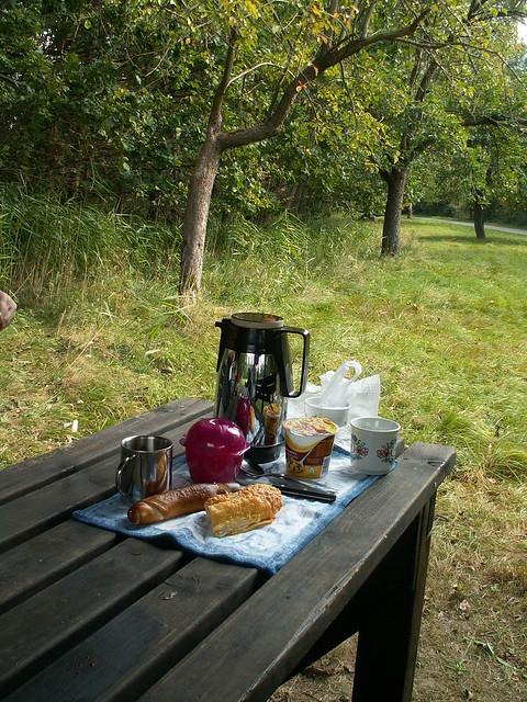 Ein Picknick im Spreewald nach der Arbeit darauf kann man ein kleines Loblied singen 134
