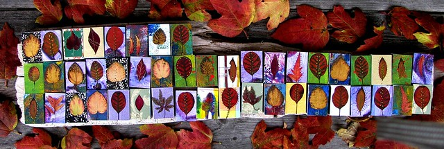 Leaf Matchboxes