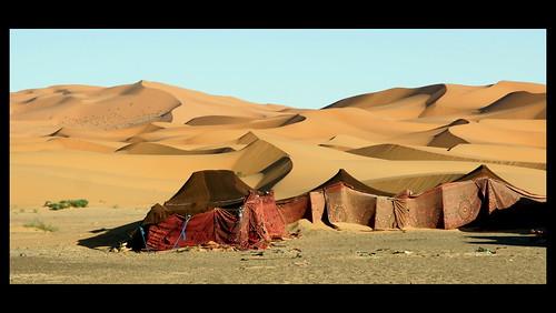 desert morocco duinen marokko zand berbers merzouga westernsahara woestijn ergchebbidunes almaġrib المغرب berbertenten