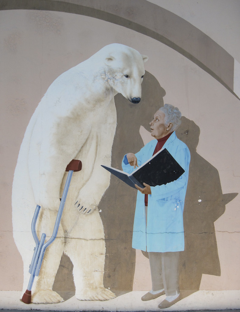 Polar Bear on Crutch Consulting With Doctor