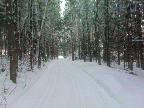 winter snow ski pei millriver crosssountry upwest