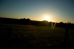 Coucher de soleil / IMG_3458