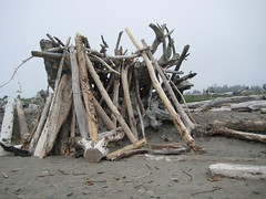 Log shelter