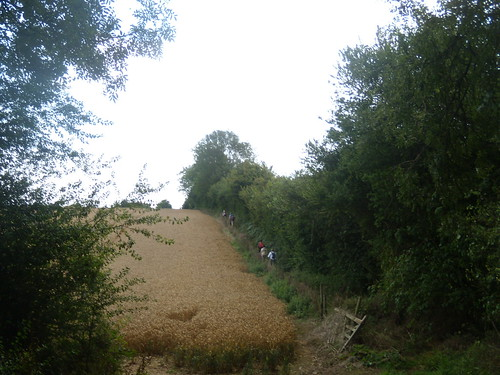 up a field edge
