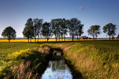 blue trees green field yellow creek countryside stream sweden farm seed rape oil sverige raps hdr östergötland canonefs1785mmf456isusm sätuna johanklovsjö
