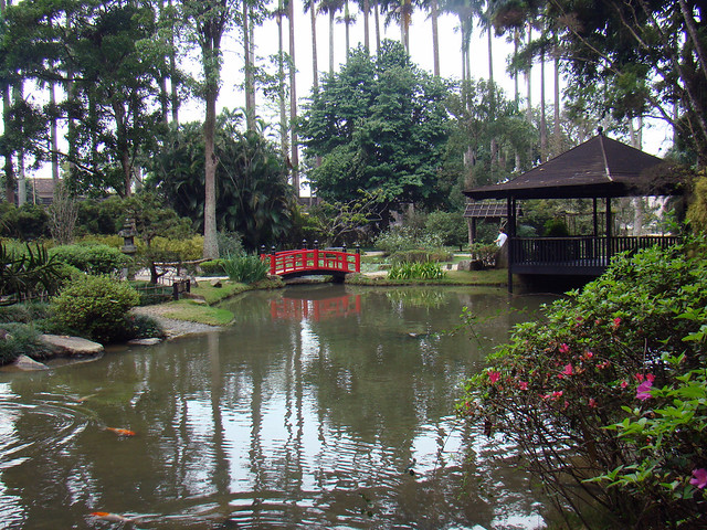 pedras jardim botanico:Jardim Japonês, Jardim Botânico – Botanical garden