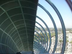 California Screamin' Rollercoaster