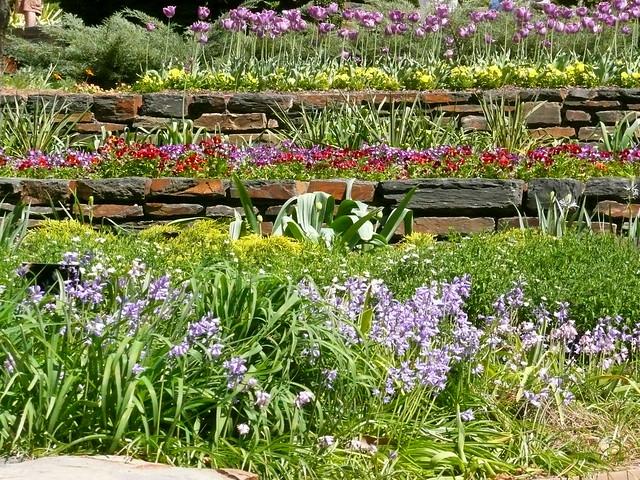 Flowered tiers