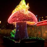 Disneyland August 2009 065