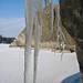 2009-02-21 Saltsjöbaden-Dalarö