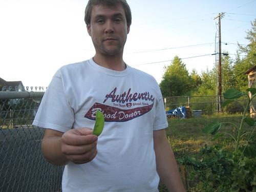 Peas offering