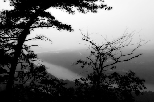 bw white black tree river geotagged pennsylvania scenic overlook viewpoint susquehanna mudpig stevekelley councilcup