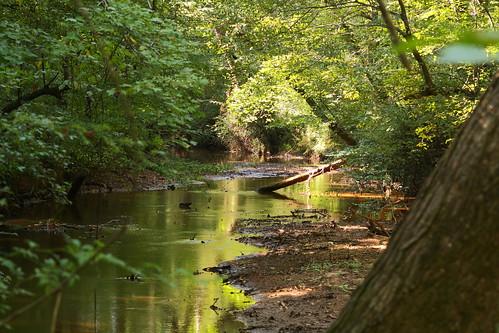 trees water creek reflections nc northcarolina lincolncounty clinefarm davidhopkinsphotography ncpedia