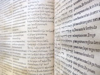 Bible polyglot