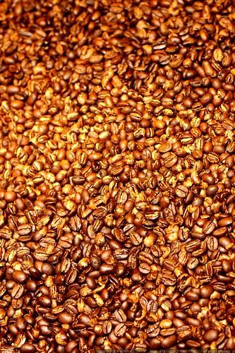 hot oregon heat hh moreno heatwave lakeoswego coffeebeans ethiopian roastingcoffee roastedcoffeebeans 20090730 threevarietiesofcoffee remnantcoffee roastingremnantcoffee timorlestepeaberrypeaberry burunribwayi ethiopiannaturalmorenoorganic
