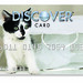 Cat Design Credit Card: Skeeter