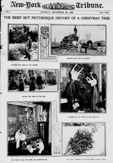 The brief but picturesque history of a Christmas tree (LOC)