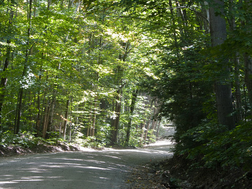 Haliburton Forest race (13)