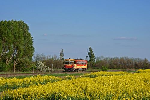 máv regionalzug bzmot csorna sonydt18703556 kisalföld motorkocsi személyvonat rábaköz hegyeshalomszombathelyvasútvonal 16osvonal kbs16