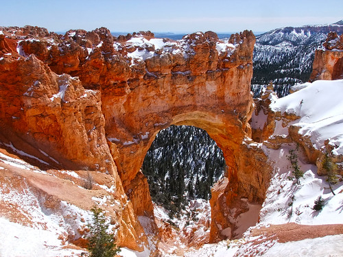 snowshoeing in bryce