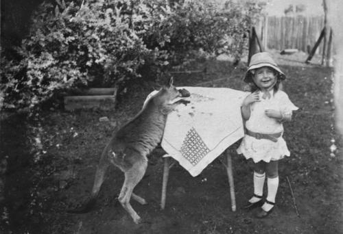 Young girl and a wallaby at a table in the garden