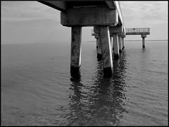 sharrots pier3