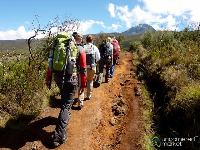 Trekking Kilmanjaro, Day 2 - Mt. Kilimanjaro, Tanzania