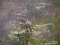 Late Monet