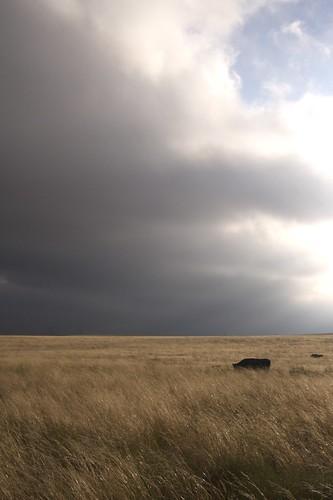 travel windmill minnesota clouds corn colorado farm roadtrip jasonswihart