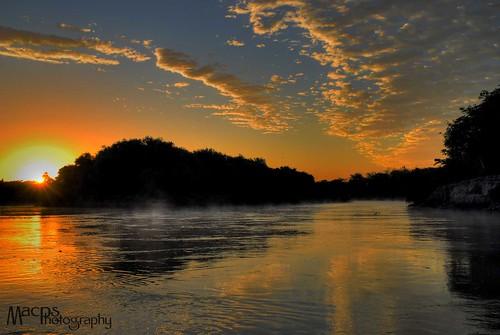 brazil brasil pantanal caceres rioparaguay pantanalmatogrossense nikond40x top20travelpix caceresmatogrosso
