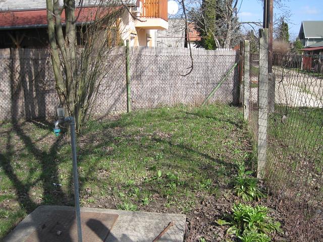 garden March 9