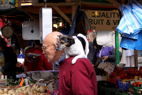 Old Man & Jack Russell, Portobello Market London