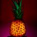 pineapple_SBC2ASSIGN2 by mpkaras