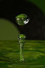 kokología verde