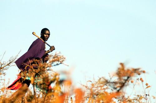 無料写真素材, 人物, 男性, 男性  黒人, マサイ族
