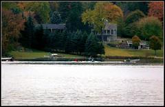 Lake Wilcox rowers